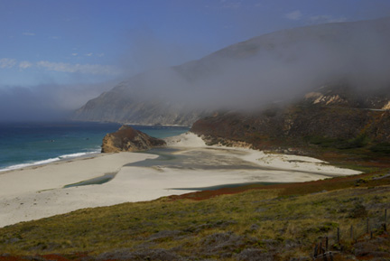 cali-coast-ground-cover01.jpg