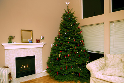 our-tree-for-blog.jpg