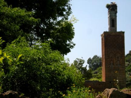 minaretandgreenery