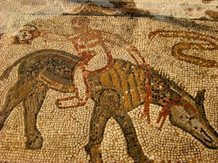 acrobat mosaic