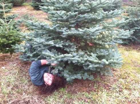 e under tree